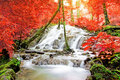 Waterfall in forest tropical south of thailand Stock Photo