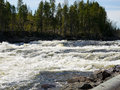 Waterfall great storforsen älvsbyn north of sweden Royalty Free Stock Image