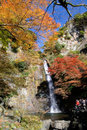 A Waterfall with Japanese maple. Royalty Free Stock Photos