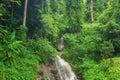 Waterfall in jungle at Chiang Rai, Thailand. Royalty Free Stock Photo