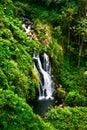 Waterfall in jungle of Hawaii Royalty Free Stock Photo