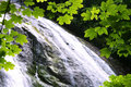Waterfall With Leaves Frame Royalty Free Stock Photo