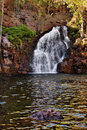 Waterfall in Litchfield, Australia Royalty Free Stock Images