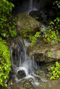 Waterfall at Manali Royalty Free Stock Image