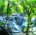 Waterfall in mexico jungle palengue site Royalty Free Stock Photo