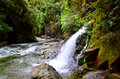 Waterfall at Mount Richmond Forest Park Royalty Free Stock Photo
