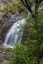 Waterfall in native bush new zealand mid canterbury mountains woolshed creek Stock Photos