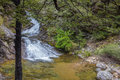 Waterfall in native bush new zealand mid canterbury mountains woolshed creek Stock Image