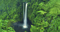 Waterfall nature scenics waterfall forest concept Stock Photos