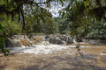 Very fast river in Kakamega Forest. Kenya, Africa Royalty Free Stock Photo