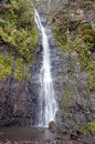 Waterfall. Polynesia. Tahiti Stock Image