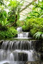 Waterfall in the Rain Forest Royalty Free Stock Photos