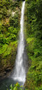 Waterfall in a rain forest dominica caribbean islands middleham falls laudat village morne trois pitons national park Stock Images