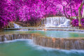 Waterfall In Rain Forest (Tat ...