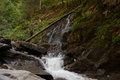 Waterfall and river in forest alpine summer alpine vacation tourism Stock Photo