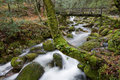 Waterfall river in the portuguese national park of geres in the north of the country Royalty Free Stock Photography