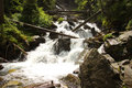 Waterfall with rocks mountain river trunk trees and boulders Stock Photography