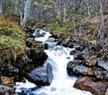 Waterfall running water in forest smooth and sharp Stock Photos