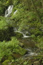 Waterfall, Shenandoah National Park Royalty Free Stock Photos
