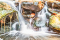 Waterfall in small garden Royalty Free Stock Photo