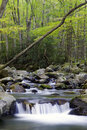 A waterfall in smoky mountain national park beautiful Stock Image