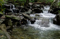 Waterfall smoky mountains small in the national park Stock Photos