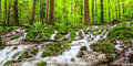 Waterfall in a Spring Forest Royalty Free Stock Photo