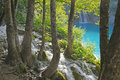 Waterfall and stream through the forest plitvice croatia Stock Photos