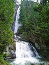 Waterfall surrounded by wooded wilderness beautiful mountain Royalty Free Stock Photos