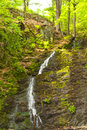 Waterfall in the thuringian forest germany Royalty Free Stock Images