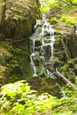Waterfall in the thuringian forest germany Stock Images