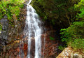 Waterfall in the tropical forest Stock Photos
