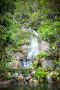 Waterfall in tropical forest on Koh Samui Royalty Free Stock Photo