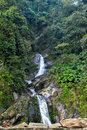 Waterfall tropical rainforest Royalty Free Stock Photo