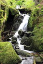 Waterfall of the valley of Munster Royalty Free Stock Photo