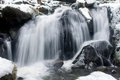 Waterfall in winter in triberg iced the black forest Royalty Free Stock Photo
