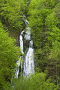 Waterfalls in forest Royalty Free Stock Images
