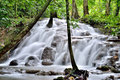 Waterfalls in thailand waterfall deep forest phangnga Royalty Free Stock Photo