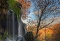Waterfalls in their natural environment natural Royalty Free Stock Image
