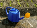Watering can against vegetable bed Stock Photography