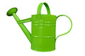 Watering can the flowers don t look happy i d like to water them is there a Royalty Free Stock Image