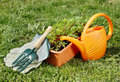 Watering can with gardening tools on green grass Royalty Free Stock Photo