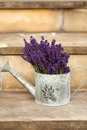 Watering can and lavende close up Royalty Free Stock Photo