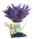 Watering can with lavender sachet on white Royalty Free Stock Photo