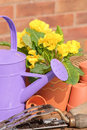 Watering Can & Plant Pots Royalty Free Stock Photography
