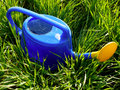 Watering can plastic full of water among growing green grass Royalty Free Stock Photography
