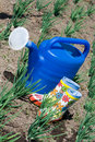 Watering can and rubber boots on the vegetable gar Stock Photo