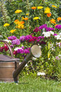 Watering can stands in front of a flowerbed old copper standing colorful flower bed summer flowers Stock Photos