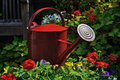 Watering Can Surrounded By Flowers Horizontally Royalty Free Stock Photography