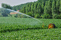 Watering in a corn field in proissans in perigord france Royalty Free Stock Photos